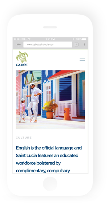 Vordik Project Case Study for Cabot Saint Lucia